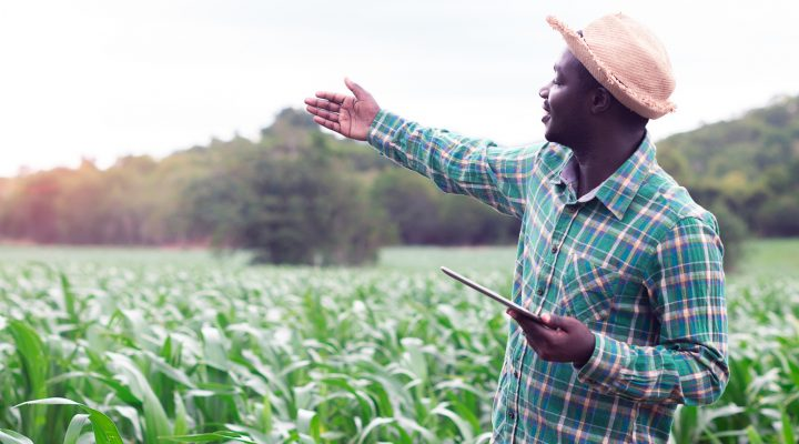 agriculture de futur